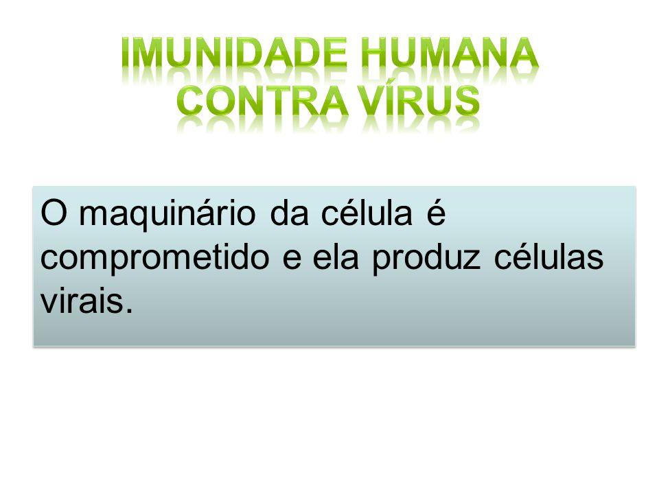 Imunidade Humana contra Vírus
