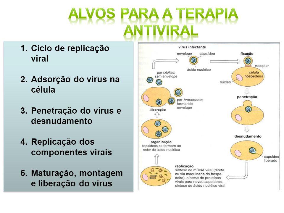 Alvos para a terapia antiviral
