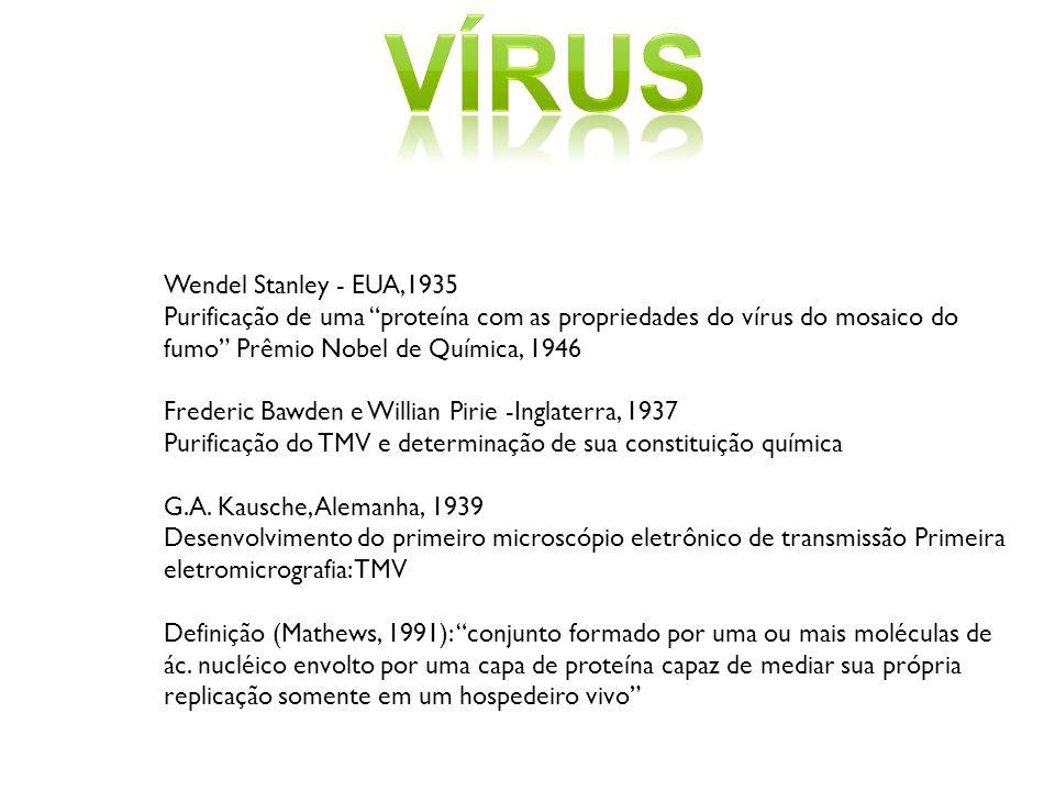 vírus Wendel Stanley - EUA,1935