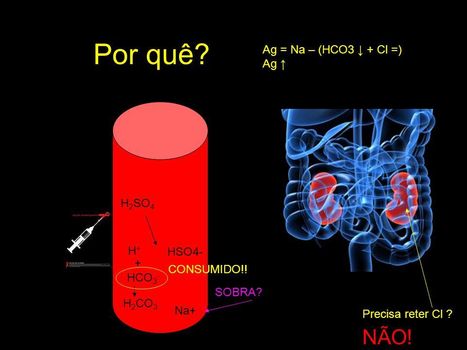 Por quê NÃO! Ag = Na – (HCO3 ↓ + Cl =) Ag ↑ H2SO4 H+ HSO4- +