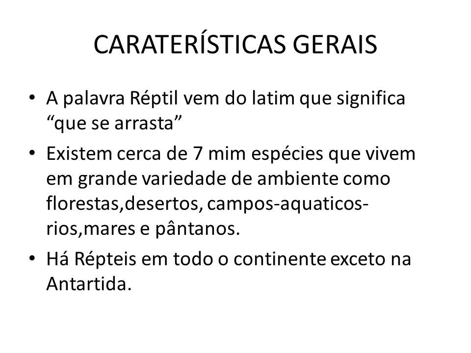 CARATERÍSTICAS GERAIS