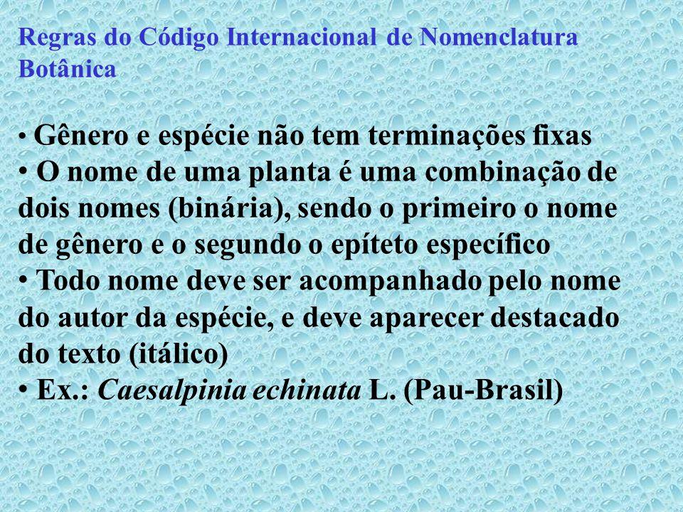 Ex.: Caesalpinia echinata L. (Pau-Brasil)