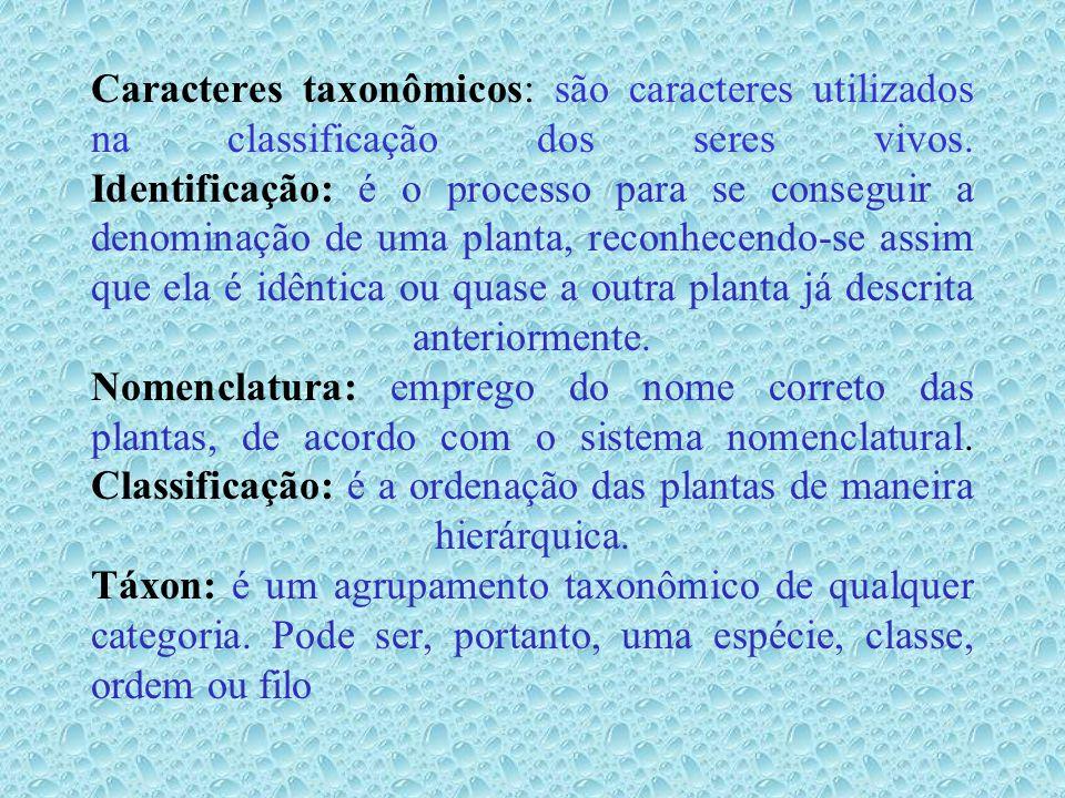 Caracteres taxonômicos: são caracteres utilizados na classificação dos seres vivos.