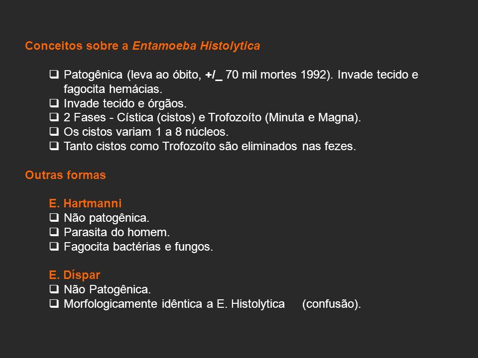 Conceitos sobre a Entamoeba Histolytica