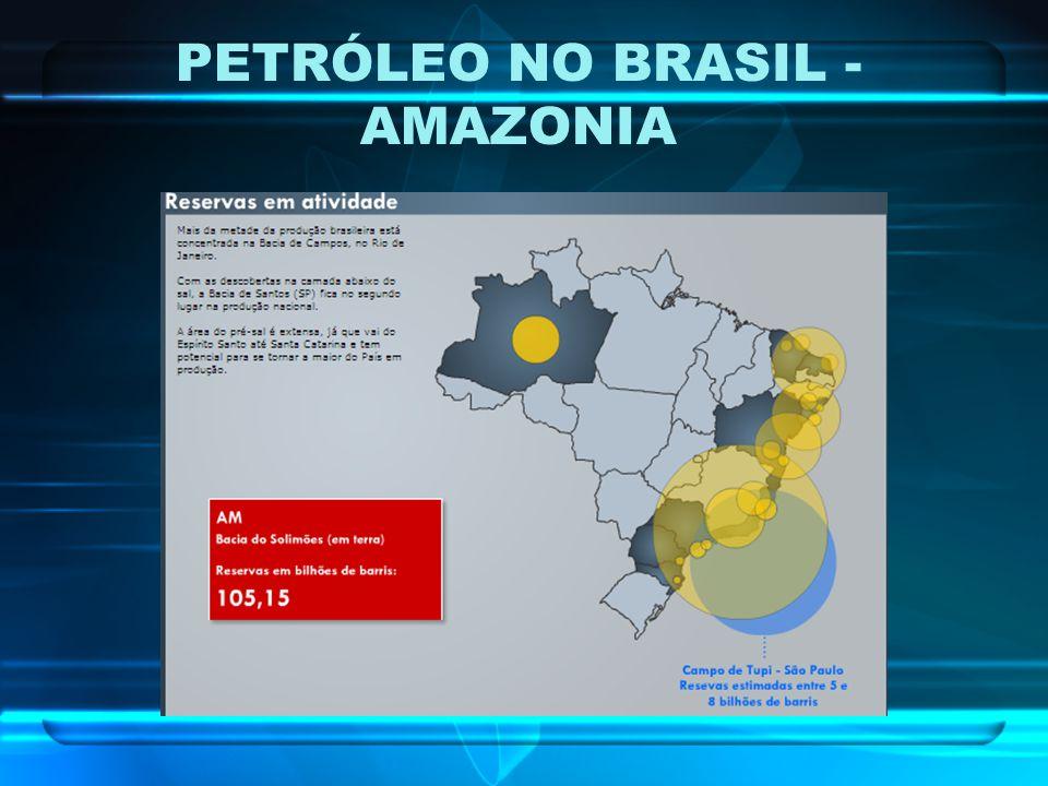 PETRÓLEO NO BRASIL - AMAZONIA