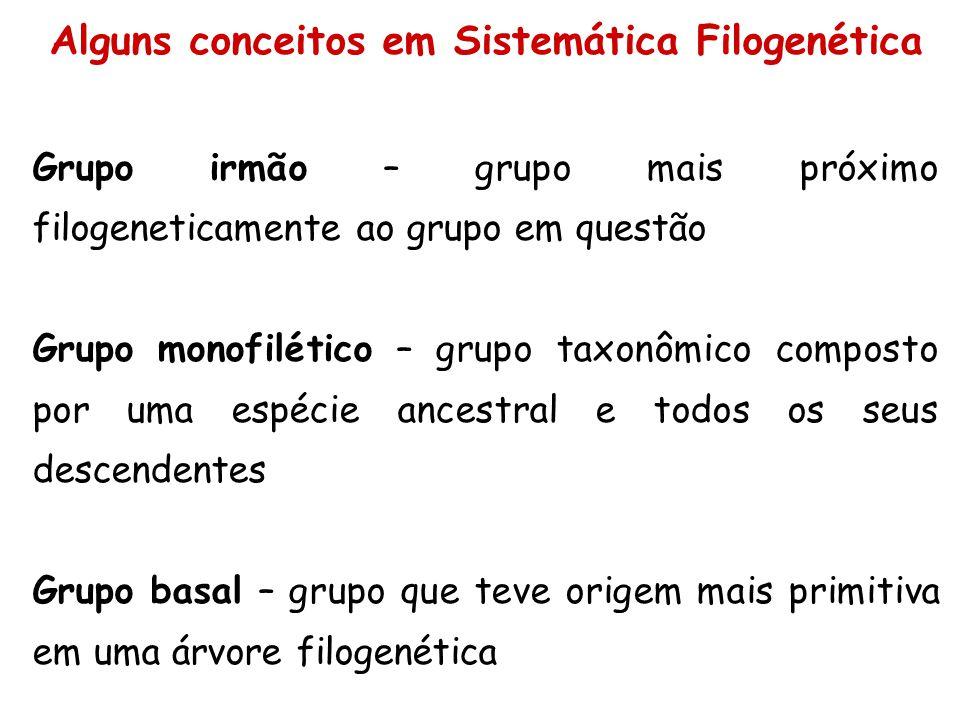 Alguns conceitos em Sistemática Filogenética