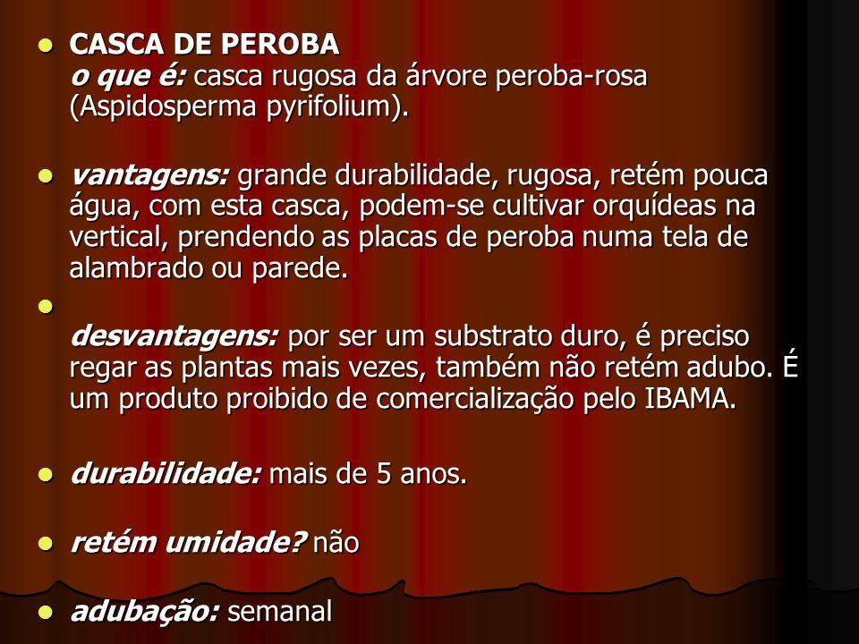 CASCA DE PEROBA o que é: casca rugosa da árvore peroba-rosa (Aspidosperma pyrifolium).