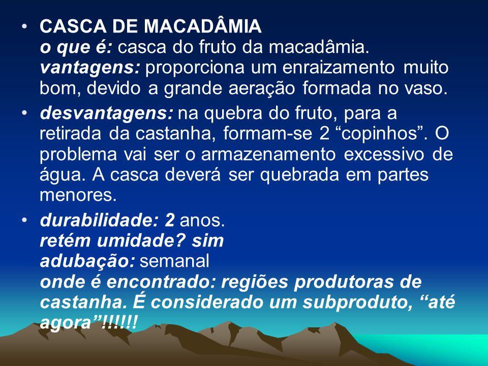 CASCA DE MACADÂMIA o que é: casca do fruto da macadâmia
