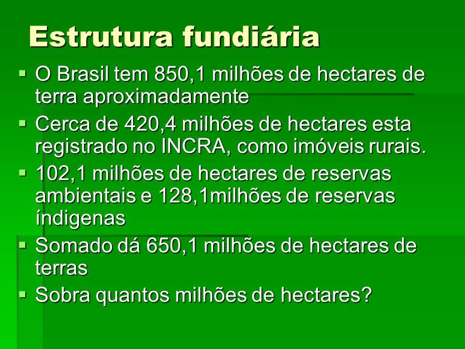 Estrutura fundiária O Brasil tem 850,1 milhões de hectares de terra aproximadamente.