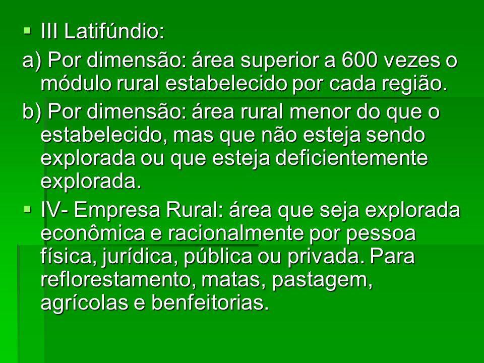 III Latifúndio: a) Por dimensão: área superior a 600 vezes o módulo rural estabelecido por cada região.