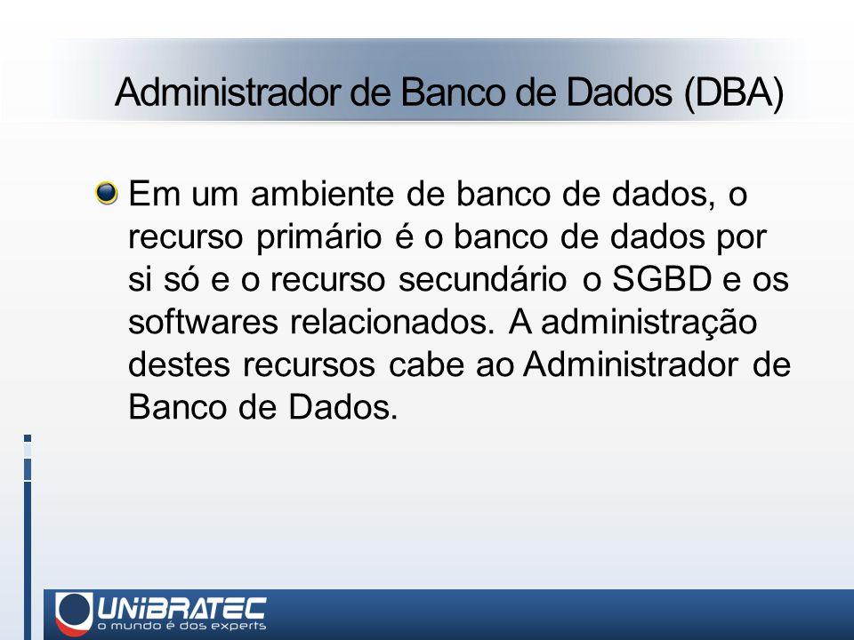 Administrador de Banco de Dados (DBA)