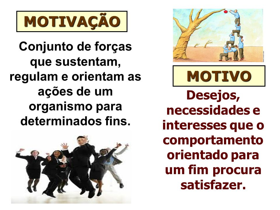 MOTIVAÇÃO Conjunto de forças que sustentam, regulam e orientam as ações de um organismo para determinados fins.