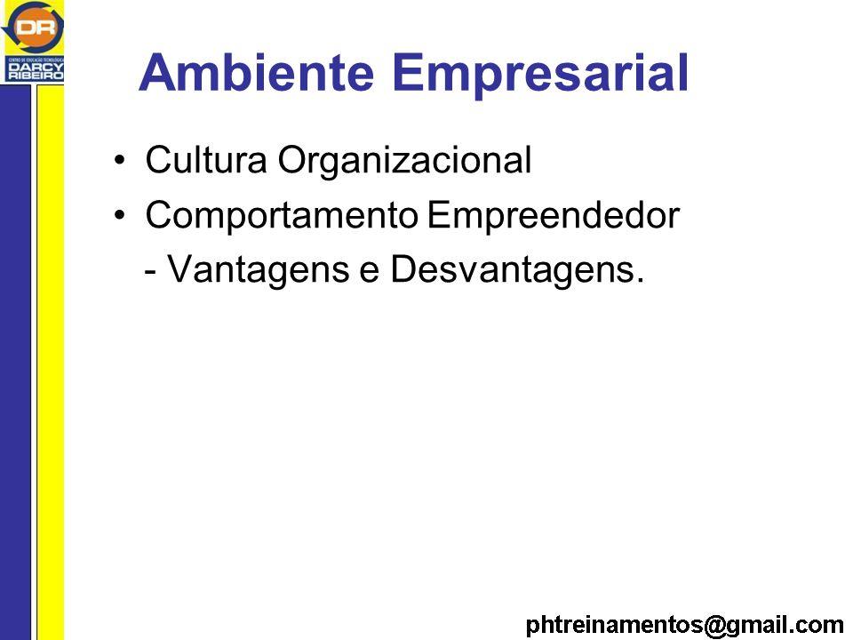 Ambiente Empresarial Cultura Organizacional Comportamento Empreendedor