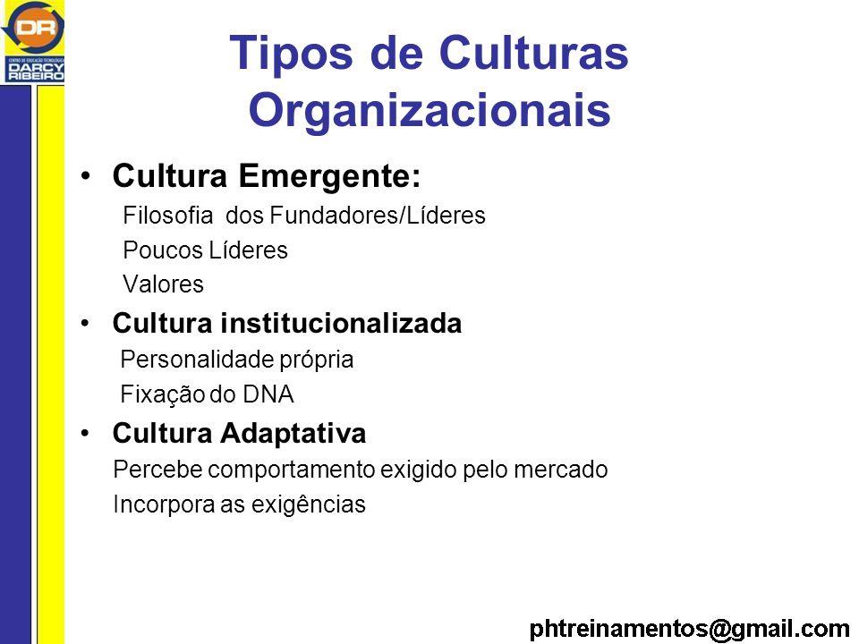 Tipos de Culturas Organizacionais