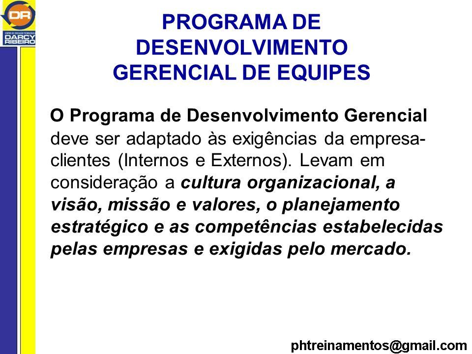 PROGRAMA DE DESENVOLVIMENTO GERENCIAL DE EQUIPES