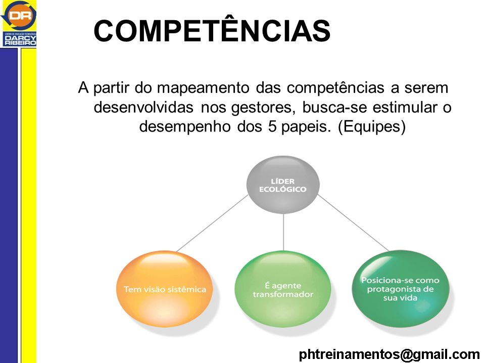 COMPETÊNCIAS A partir do mapeamento das competências a serem desenvolvidas nos gestores, busca-se estimular o desempenho dos 5 papeis.