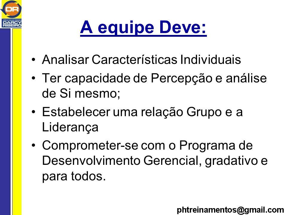 A equipe Deve: Analisar Características Individuais