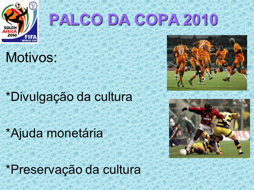 PALCO DA COPA 2010 Motivos: *Divulgação da cultura *Ajuda monetária