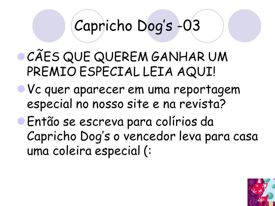 Capricho Dog's -03 CÃES QUE QUEREM GANHAR UM PREMIO ESPECIAL LEIA AQUI! Vc quer aparecer em uma reportagem especial no nosso site e na revista