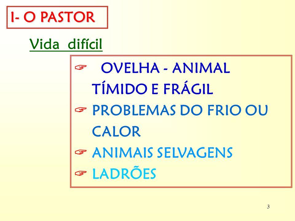 I- O PASTOR Vida difícil.  OVELHA - ANIMAL. TÍMIDO E FRÁGIL.  PROBLEMAS DO FRIO OU CALOR.  ANIMAIS SELVAGENS.