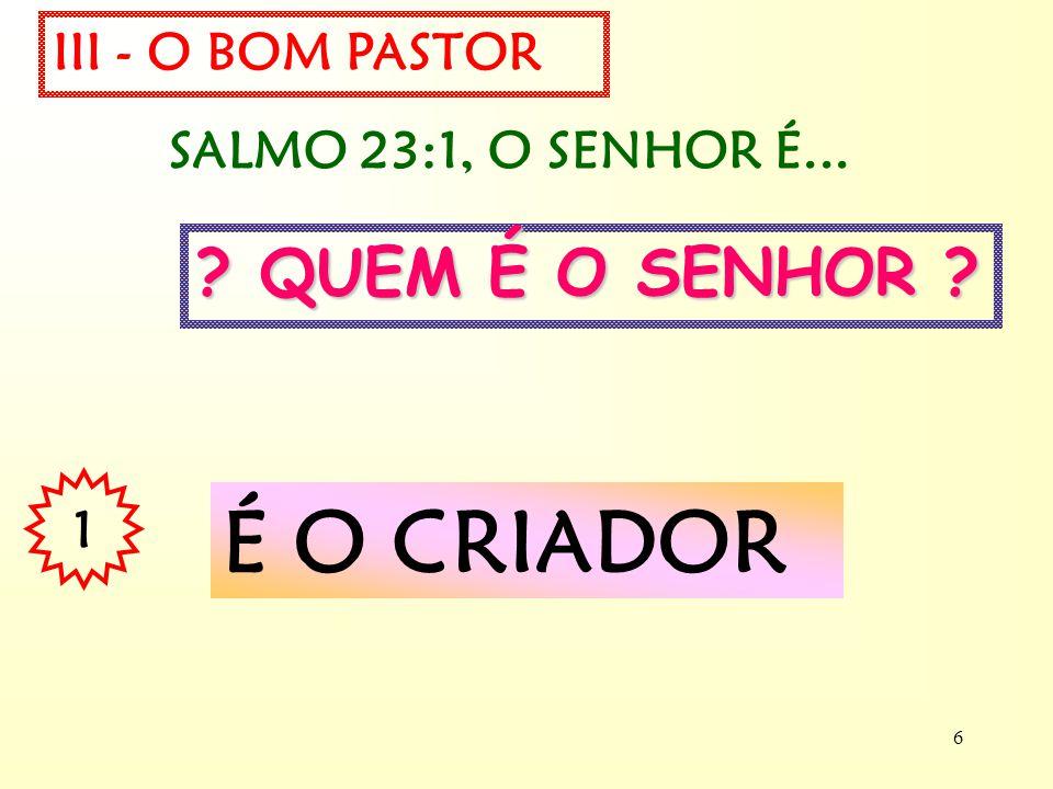É O CRIADOR QUEM É O SENHOR III - O BOM PASTOR