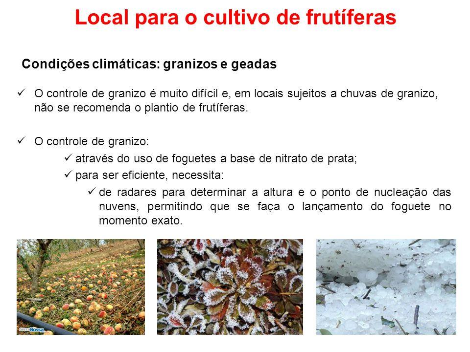 Local para o cultivo de frutíferas