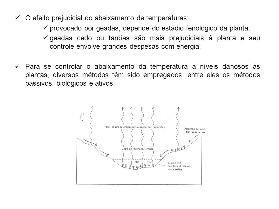 O efeito prejudicial do abaixamento de temperaturas: