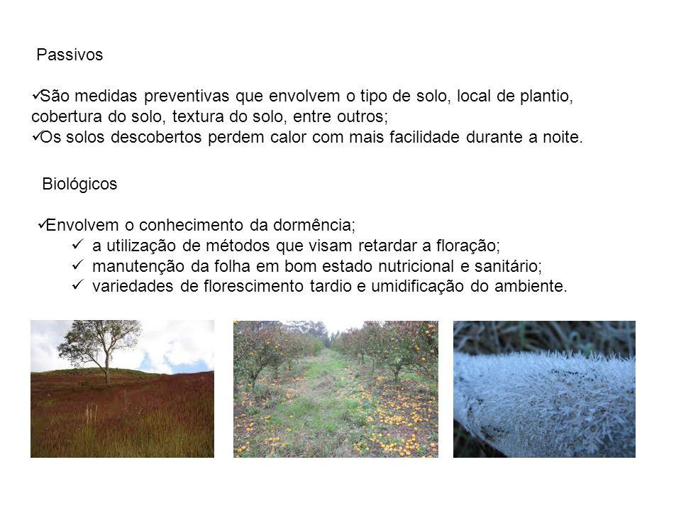 Passivos São medidas preventivas que envolvem o tipo de solo, local de plantio, cobertura do solo, textura do solo, entre outros;
