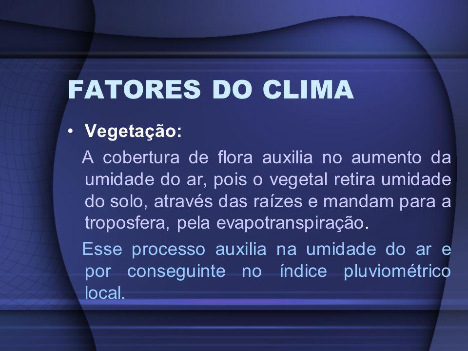 FATORES DO CLIMA Vegetação: