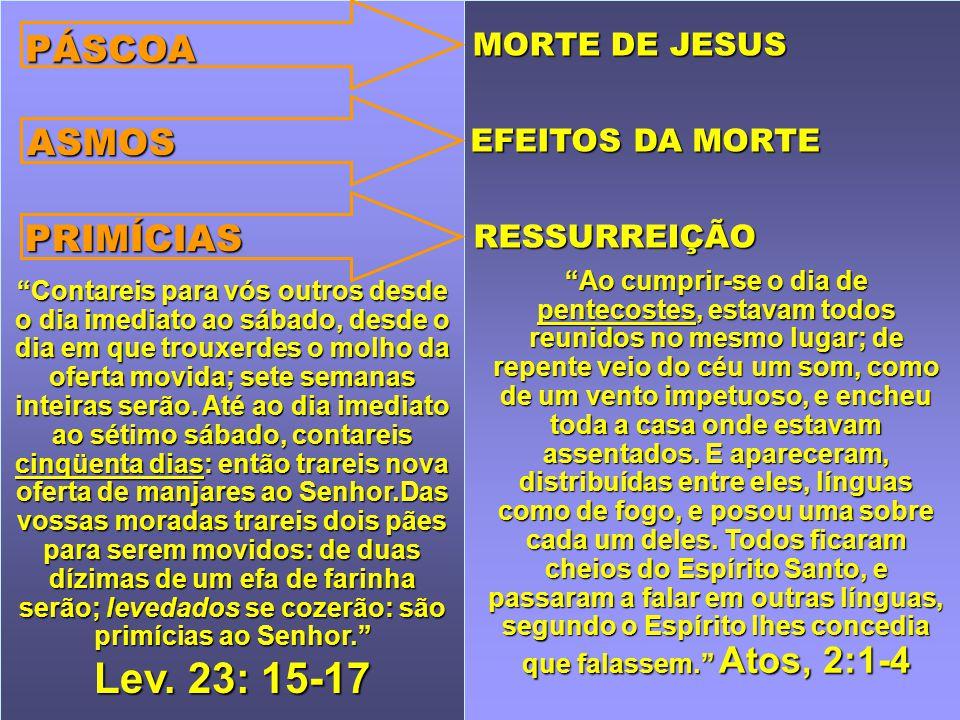 Lev. 23: 15-17 PÁSCOA ASMOS PRIMÍCIAS MORTE DE JESUS EFEITOS DA MORTE