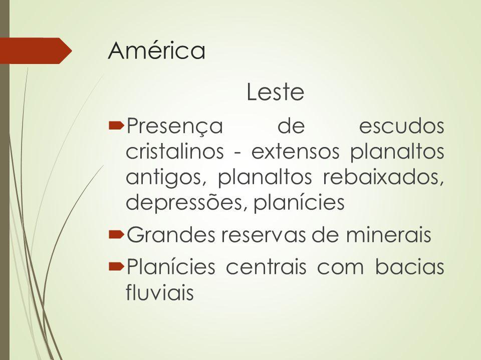 América Leste. Presença de escudos cristalinos - extensos planaltos antigos, planaltos rebaixados, depressões, planícies.
