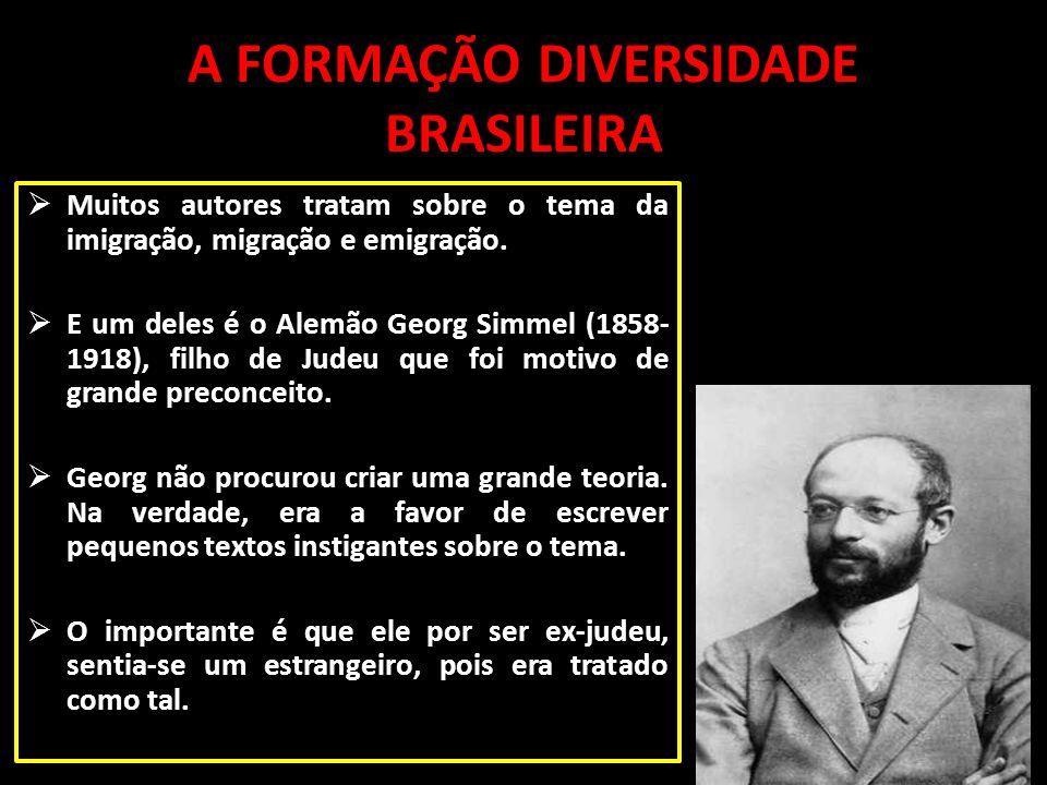 A FORMAÇÃO DIVERSIDADE BRASILEIRA
