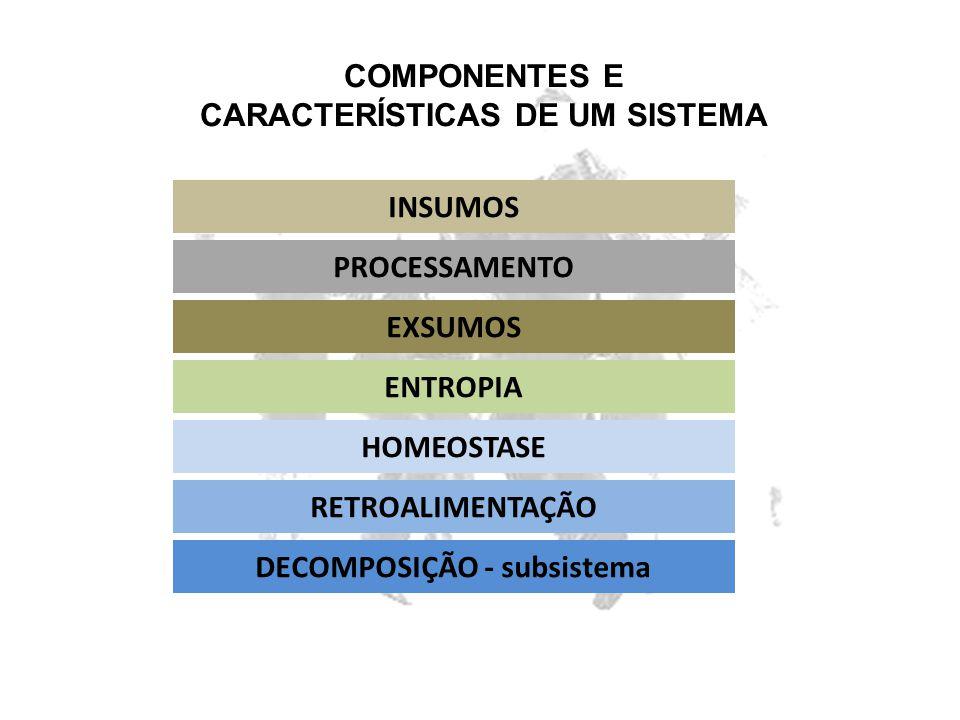 CARACTERÍSTICAS DE UM SISTEMA DECOMPOSIÇÃO - subsistema