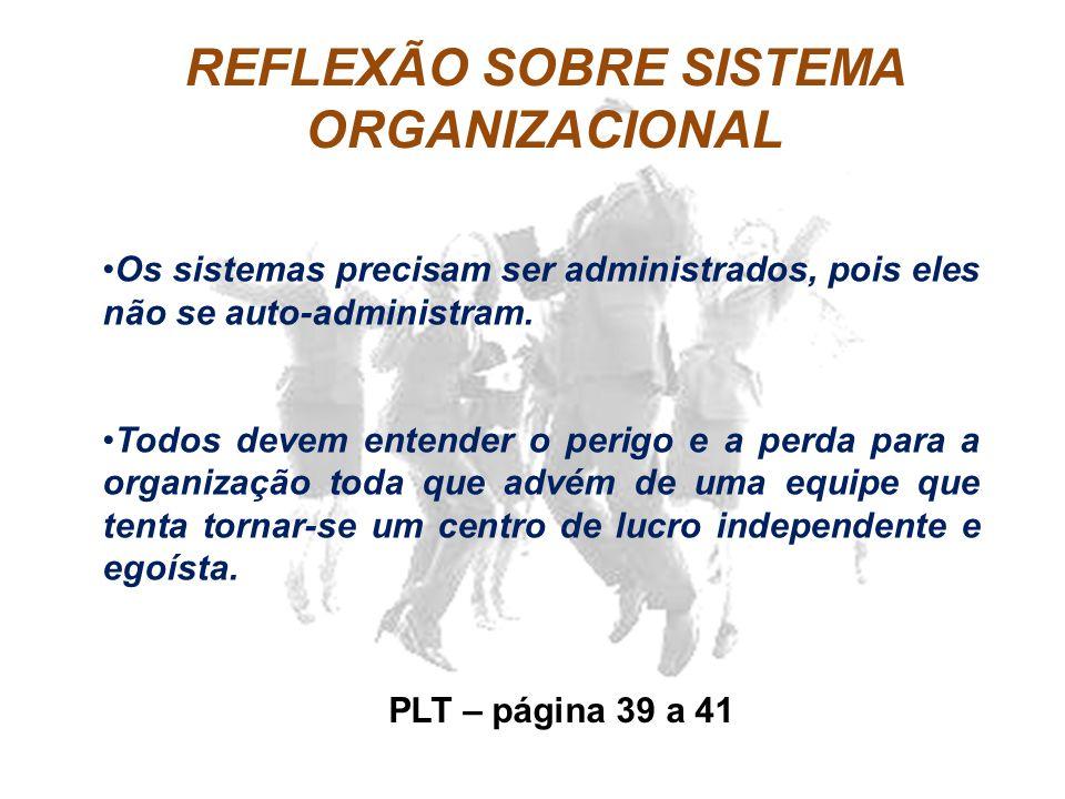 REFLEXÃO SOBRE SISTEMA ORGANIZACIONAL