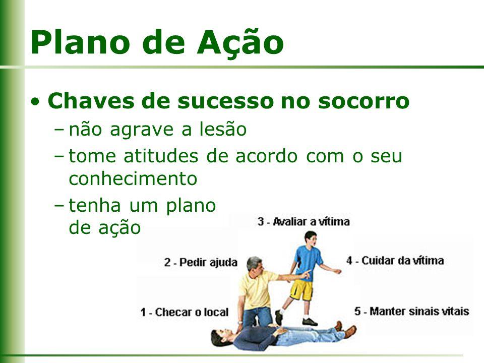 Plano de Ação Chaves de sucesso no socorro não agrave a lesão