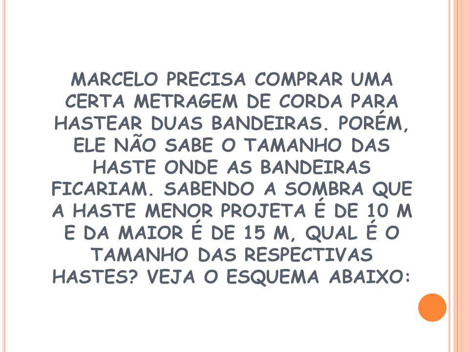 MARCELO PRECISA COMPRAR UMA CERTA METRAGEM DE CORDA PARA HASTEAR DUAS BANDEIRAS.
