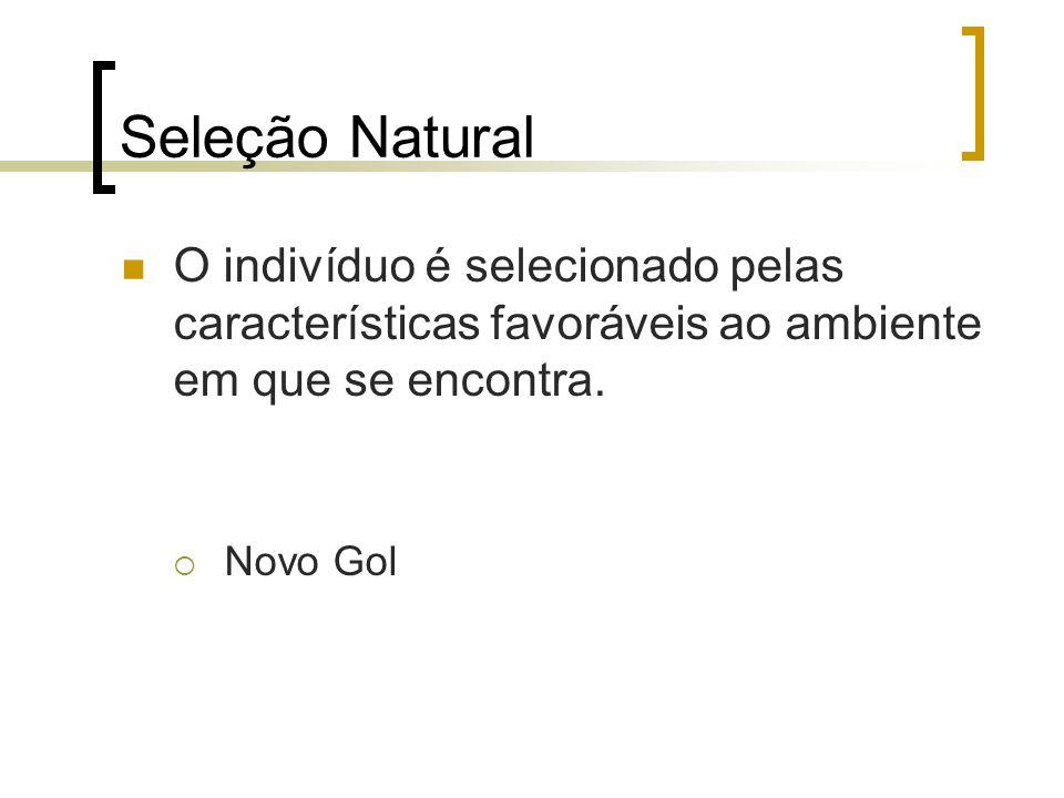 Seleção Natural O indivíduo é selecionado pelas características favoráveis ao ambiente em que se encontra.