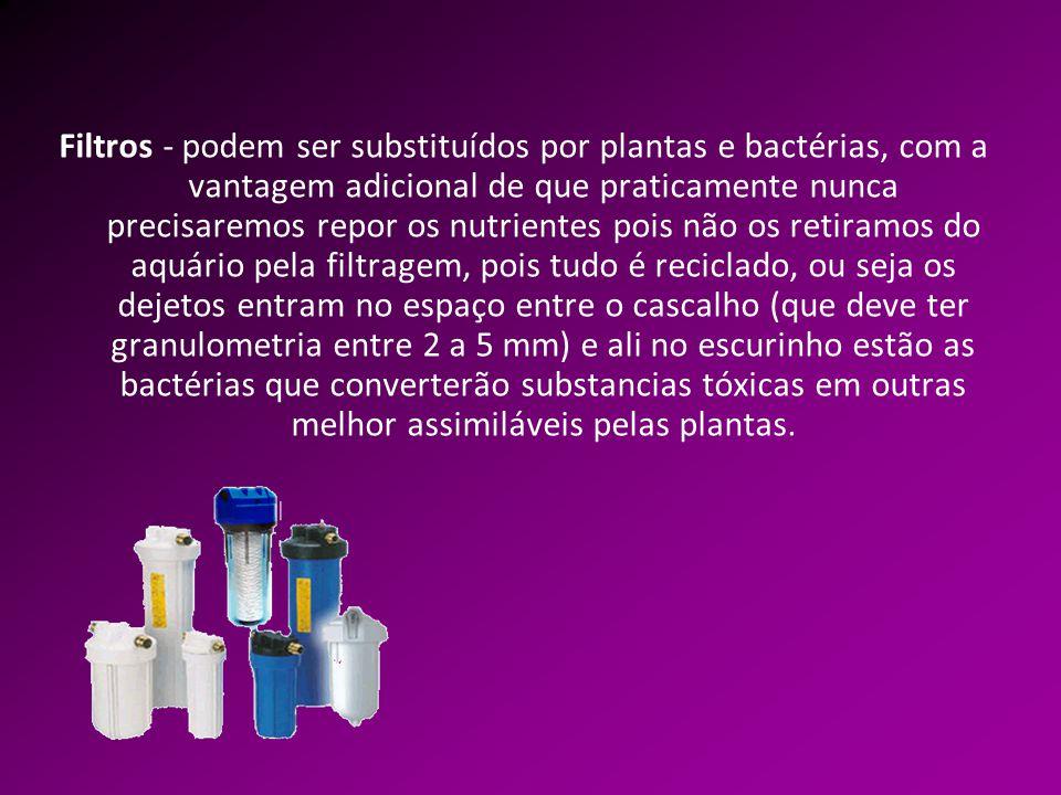 Filtros - podem ser substituídos por plantas e bactérias, com a vantagem adicional de que praticamente nunca precisaremos repor os nutrientes pois não os retiramos do aquário pela filtragem, pois tudo é reciclado, ou seja os dejetos entram no espaço entre o cascalho (que deve ter granulometria entre 2 a 5 mm) e ali no escurinho estão as bactérias que converterão substancias tóxicas em outras melhor assimiláveis pelas plantas.
