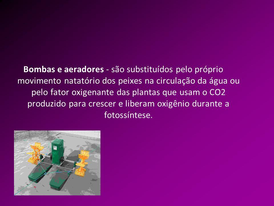 Bombas e aeradores - são substituídos pelo próprio movimento natatório dos peixes na circulação da água ou pelo fator oxigenante das plantas que usam o CO2 produzido para crescer e liberam oxigênio durante a fotossíntese.