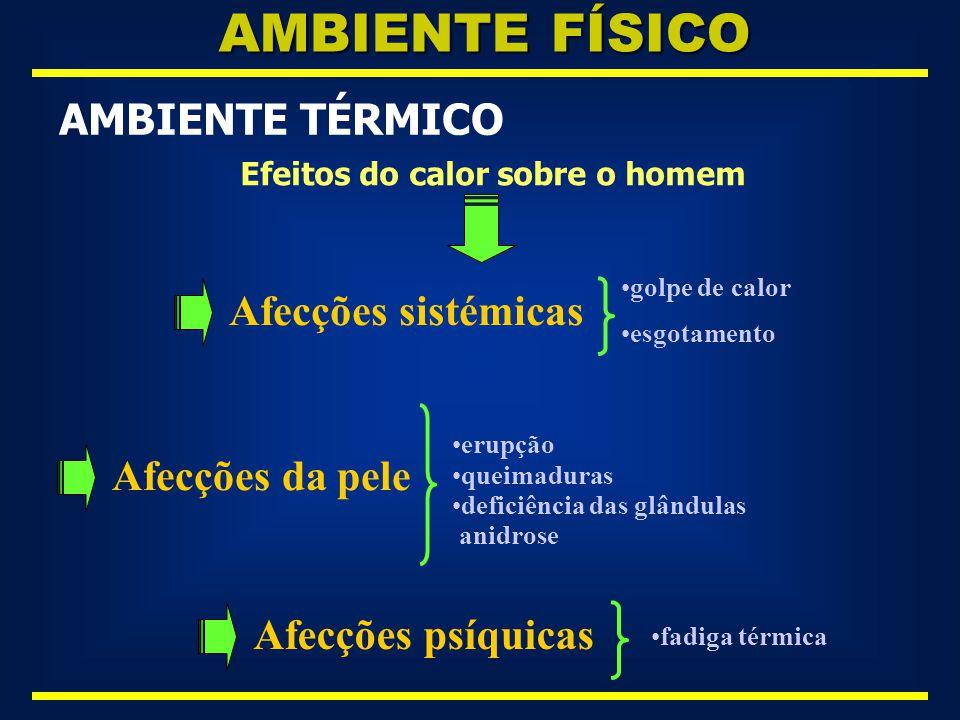 AMBIENTE FÍSICO AMBIENTE TÉRMICO Afecções sistémicas Afecções da pele