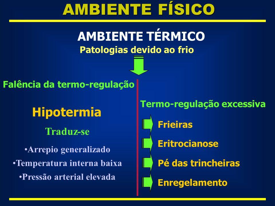 AMBIENTE FÍSICO AMBIENTE TÉRMICO Hipotermia Traduz-se