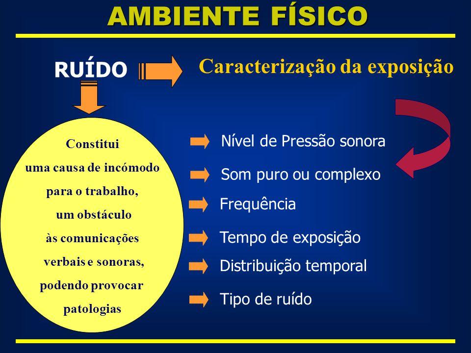 AMBIENTE FÍSICO Caracterização da exposição RUÍDO