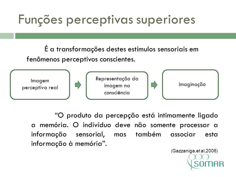 Funções perceptivas superiores
