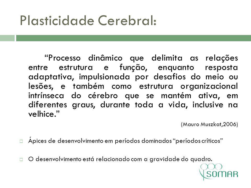 Plasticidade Cerebral: