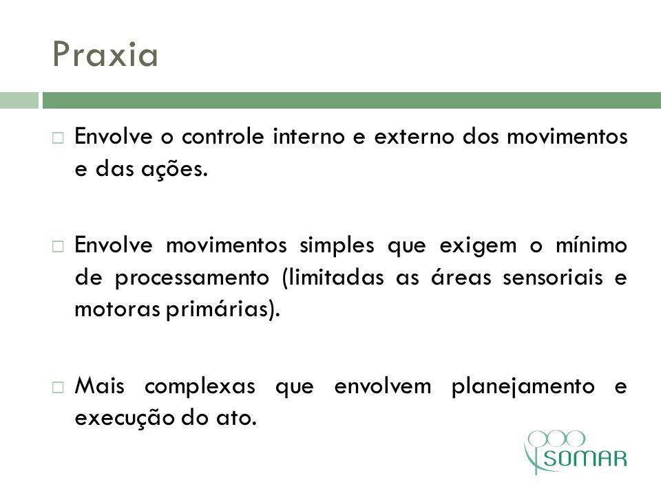 Praxia Envolve o controle interno e externo dos movimentos e das ações.