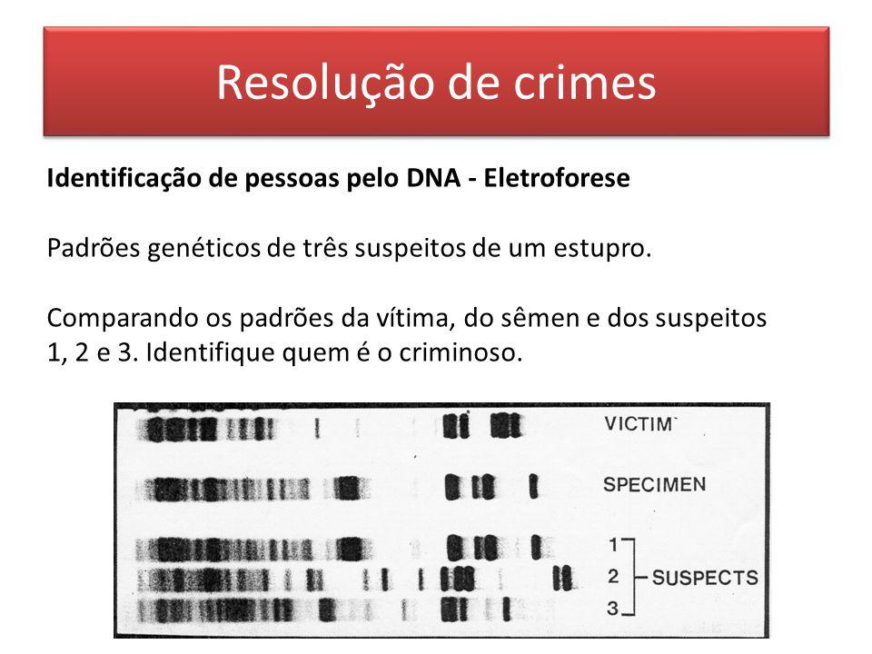 Resolução de crimes Identificação de pessoas pelo DNA - Eletroforese
