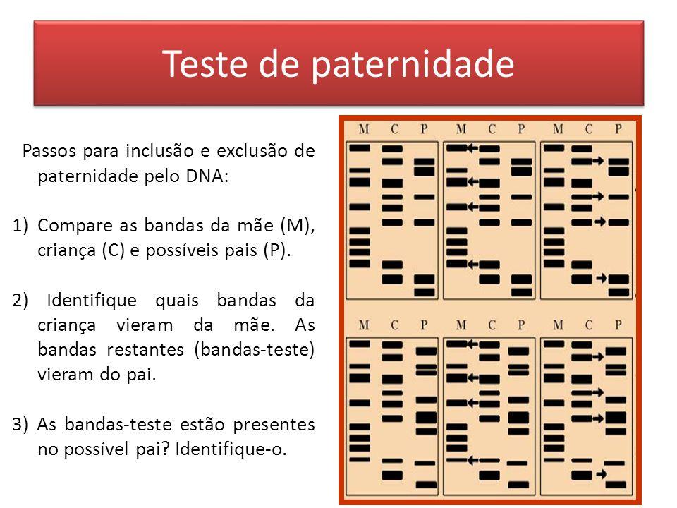 Teste de paternidade Passos para inclusão e exclusão de paternidade pelo DNA: Compare as bandas da mãe (M), criança (C) e possíveis pais (P).