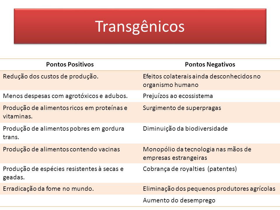 Transgênicos Pontos Positivos Pontos Negativos