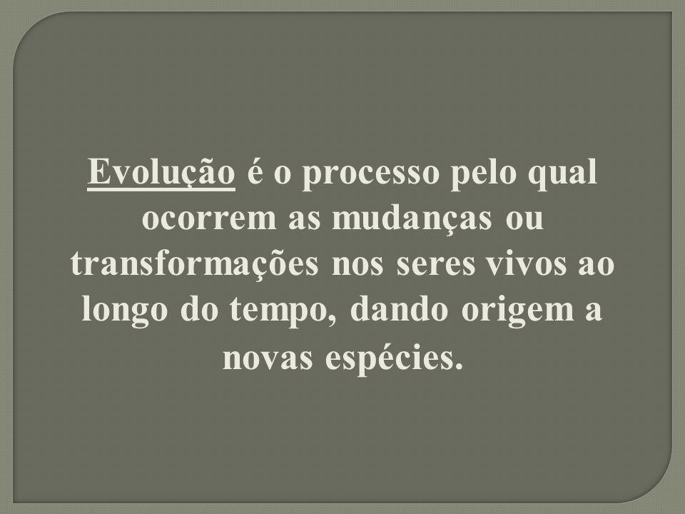 Evolução é o processo pelo qual ocorrem as mudanças ou transformações nos seres vivos ao longo do tempo, dando origem a novas espécies.