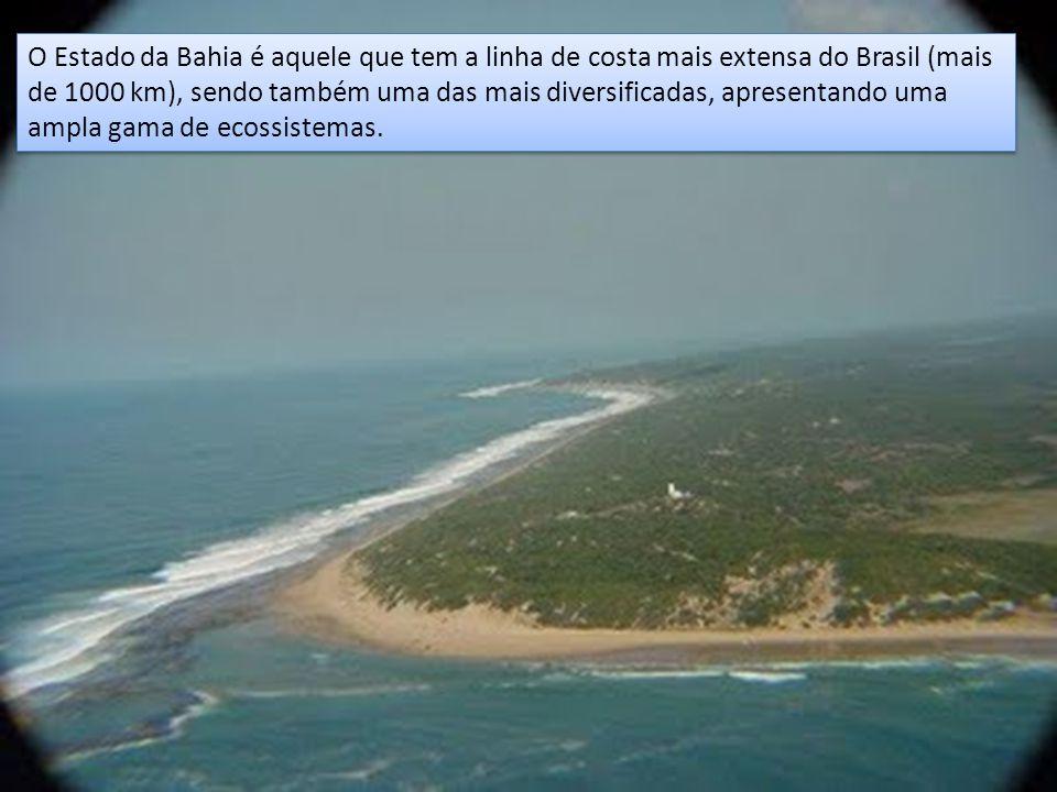 O Estado da Bahia é aquele que tem a linha de costa mais extensa do Brasil (mais de 1000 km), sendo também uma das mais diversificadas, apresentando uma ampla gama de ecossistemas.